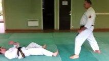 Nihon Tai-Jitsu: Défenses contre saisie de manche à une main