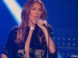 Céline Dion en concert à Bercy - 5 décembre 2013