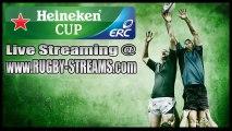 """Watch """"Online"""" Zebre vs Saracens Live Streaming Heineken Cup"""