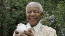 Nelson Mandela: Anti-apartheid icon
