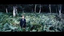 La dépression de Lars von Trier - Pacôme Thiellement