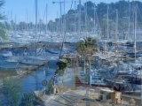 film artphotos bord de mer