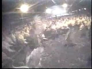 Turkey Farms