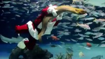 Le Père Noël nage au milieu des poissons à Tokyo