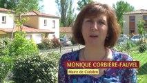 Tout savoir sur la communauté de communes Tarn & Dadou