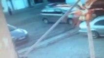 Un chien attaque deux autres chiens à Pont-à-Celles