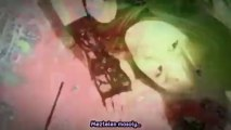 Morning Musume - Egao YES nude HUN SUB