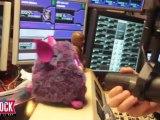 Le nouveau jouet de Romano : un Furby.