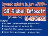 Website Designing, Website Design, Cheap web Designer in Saraswati Vihar