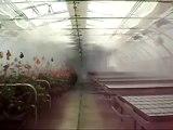 lắp đặt Hệ thống phun sương tại quận hà đông hà nội