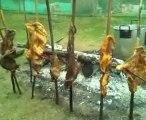 """Carne a la llanera, ternera, mamona, cochinillo, costillas de lechón, parrillada, preparado en su hogar por A fuego lento """"la mejor carne del planeta. web: afuegolento.wix.com/carne"""