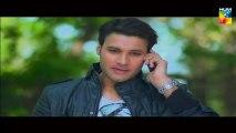 Khoya Khoya Chand Episode 17 HUM TV Drama