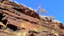 OZ 2012 Road Trip - Meilleurs moments en Australie 2012 (Partie 6) - Pauline et Romain Osent - WHV