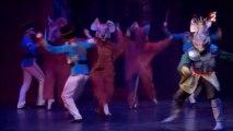 casse noisette par le ballet de st petersbourg acte 2
