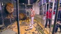 Les lions du cirque Pinder invités d'I>TELE