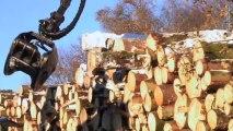 EURL LAFAYE à Pérols-sur-Vézère - Abattage, débardage, plantations, terrassement