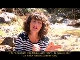 Aix-en-Provence : Journée handivalide à l'Université Paul Cézanne