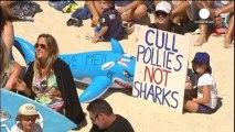 Australie : l'abattage des requins fait grincer des dents