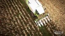Moissons de plaisir - La récolte de maïs en Pyrénées-Atlantiques