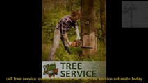 tree  removal,tree trimming, tree prunning