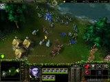 Warcraft III : Reign of Chaos - Faut pas faire son plein chez Elfes