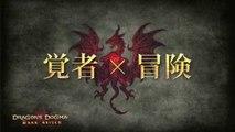 Dragon's Dogma : Dark Arisen - Staff Interview #1