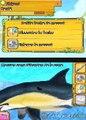 Planète Nature : Au secours des animaux marins - Allô Brigitte ? On a besoin de toi !