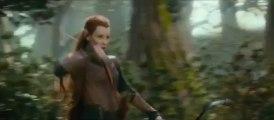 Le Hobbit La Désolation de Smaug-The Hobbit The Desolation of Smaug_Bande Annonce-2013-VF