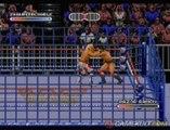 WWF Rage in the Cage - La rage dans la cage