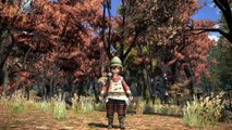 Final Fantasy XIV : A Realm Reborn - Eorzea Collection 2013