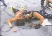 Hollywood Hogan & The nWo attack Ric Flair & Randy Savage