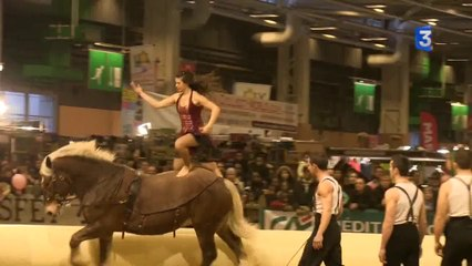 SIA 2014 : repetition spectacle equestre jehol