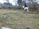 début obstacle février 2006