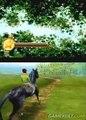 Horse Life - Je câline et je promène mon cheval