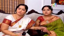 Pattu Saree 15 January 2014 , Pattu Saree 15-01-2014, Pattu Saree Latest Episode P3