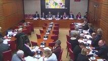 """Intervention d'Hervé Féron en Commission des Affaires Culturelles et de l'Education : rapport sur """"l'apport de la culture à l'économie en France"""""""