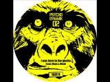 Vini Selecta & U Stone feat Lofti - Blaze Up Di Fire (Dj Panik Remix) - Vinyl Psychodynamik 02
