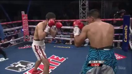Antonio DeMarco vs Jesus Gurrola 2014-01-11