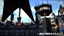 Final Fantasy XIV : A Realm Reborn - ????????