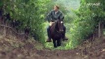 La route des vins : Argentine, Les vignobles à cheval