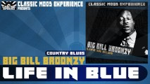 Big Bill Broonzy - Starvation Blues (1934)