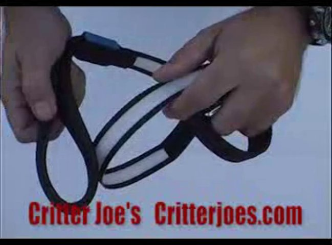 Critter Joes Pet Product Video LED Leash