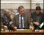 IMMIGRATION, INTÉGRATION ET NATIONALITÉ (Vote solennel) - Mardi 15 Mars 2011