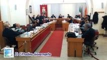 Consiglio comunale 17 gennaio 2013_Punto 2 approv, censimento e piano del verde replica Arboretti