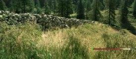 Minuscule - La Vallée des Fourmis perdues Bande-annonce