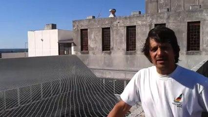 Colocacion de una malla contra palomas en el palacio de tribunales de San Isidro