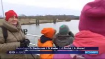 Une croisière sur le Rhin pour découvrir les oiseaux migrateurs