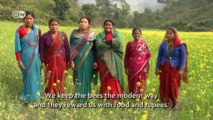 Biodiversity in Nepal: Protecting the Bees   Global 3000