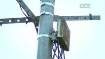 Tempête Dirk: 1500 foyers toujours sans téléphone (Finistère)