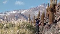 Trekking, Désert d'Atacama - Voyage au Chili